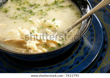 Homemade chicken (or turkey) and dumplings with crushed herbs on top - stock photo