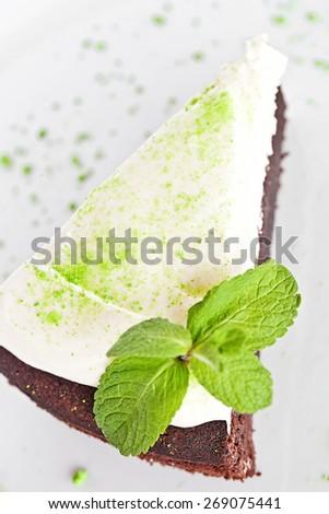 Homemade Chocolate Cake with vanilla cream and mint - stock photo