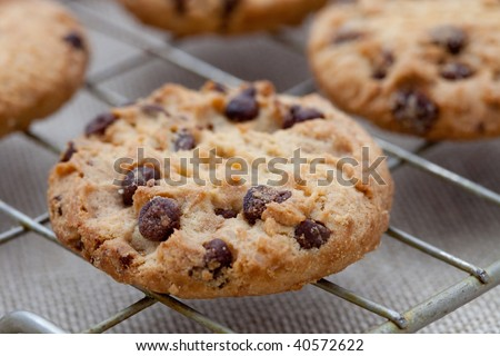 Homemade chocolate chip cookies on a cooling tray