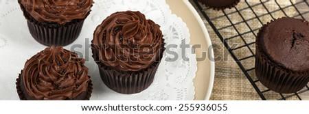 Homemade Chocolate Cupcakes. Selective focus. Panoramic image. - stock photo