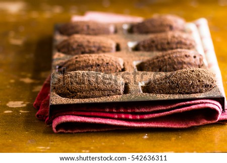 Homemade chocolate madeleines cookies with cinnamon and cocoa powder in a special madeleine mold on a wooden rustic table, selective focus