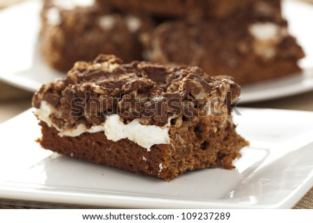 Homemade Chocolate Marshmellow Brownies on a background