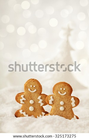 homemade christmas gingerbread cookies on the snow - stock photo