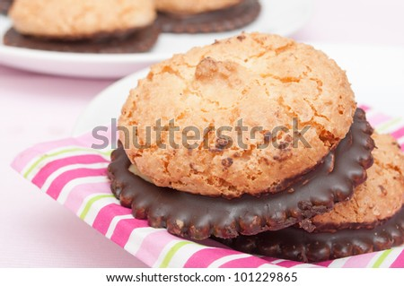 Homemade Coconut Cookies With Chocolate on White Plate