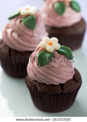 Homemade Cupcake  - stock photo