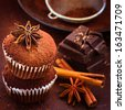 Homemade cupcakes, cocoa powder, star anise, cinnamon and dark chocolate. Selective focus - stock photo