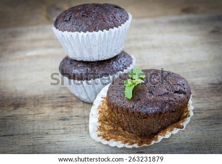 Homemade delicious chocolate muffins. - stock photo