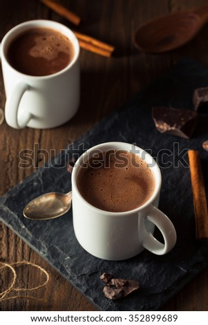 Homemade European Drinking Chocolate Ready to Drink - stock photo
