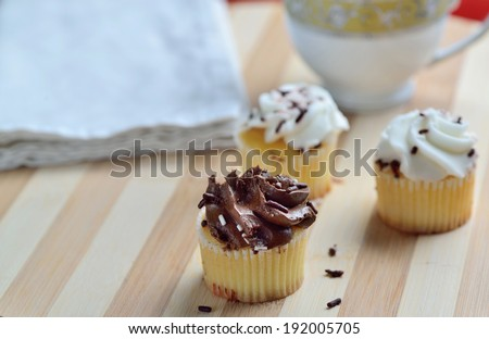 Homemade Gourmet Chocolate and Vanilla Cupcakes  - stock photo