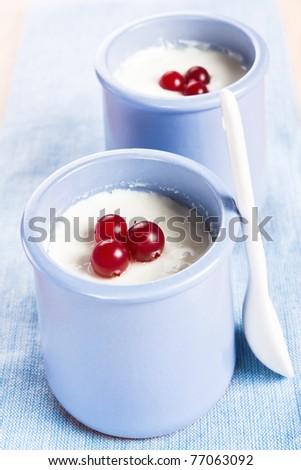 Homemade Greek yogurt with cranberries in two ceramic jars - stock photo