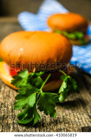 Homemade hamburger with fresh tomatoes and cheese - stock photo