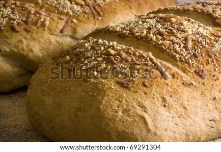 Homemade herb bread, fresh from the oven, cools on the counter. - stock photo