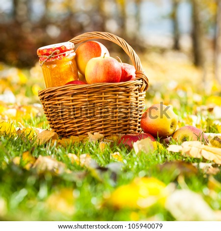 Homemade jam in glass jar and basket full of fresh red apples in autumn garden - stock photo
