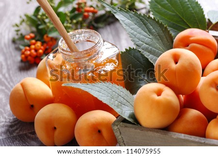 homemade jam with fruits of apricot - stock photo