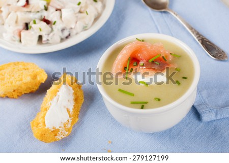 Homemade leek soup with smoked salmon and cream cheese in a bow - stock photo