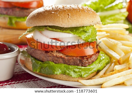 Homemade Organic Hamburger with Lettuce and Tomato - stock photo