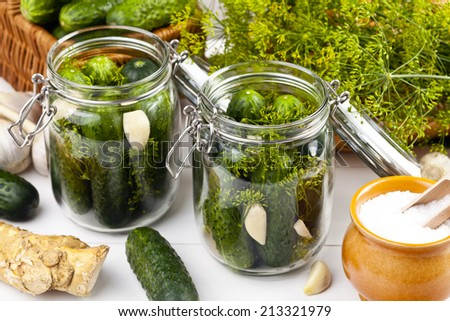 Homemade pickles in brine with garlic, dill and horseradish on woodboard - stock photo