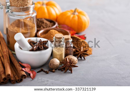 Homemade pumpkin pie spice in a glass jar - stock photo