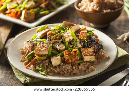Homemade Tofu Stir Fry with Vegetables and Rice - stock photo