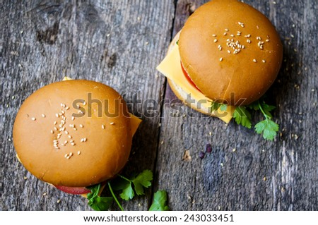 Homemmade hamburger with fresh tomatoes and cheese - stock photo