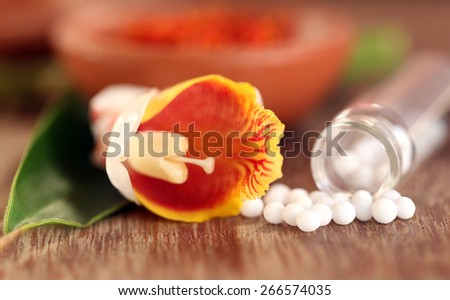 Homeopathy globules with herbal flower on wooden surface - stock photo
