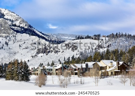 Homes line up in a row in this winter landscape.  - stock photo