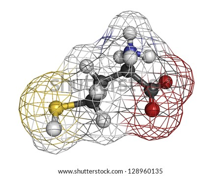 Homocysteine (Hcy) amino acid, molecular model. Elevated blood homocysteine levels are associated with cardiovascular disease. Atoms are represented as spheres with conventional color coding - stock photo