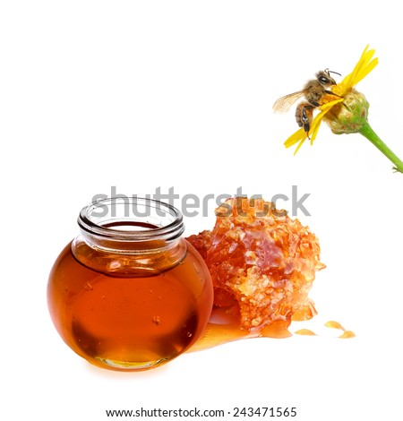 Honey and bee on the yellow flower. Close up. Isolated on white - stock photo