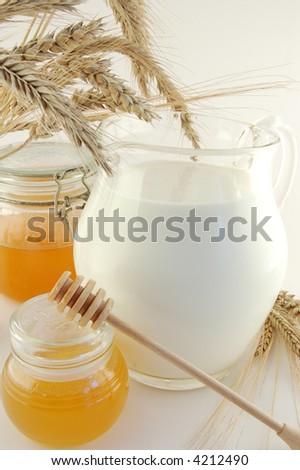 Honey and milk - stock photo