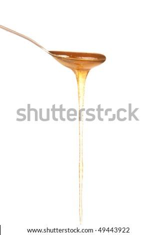 honey and spoon - stock photo