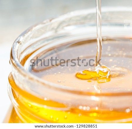 Honey closeup in jar isolated on white background. Golden honey in pot for healthy nutrition. - stock photo