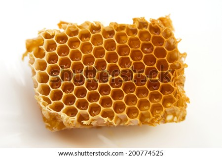 honey comb on a white plate - stock photo