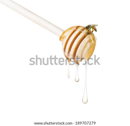 Honey diping on dipper and bee isolated with white background