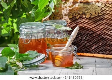 Honey in a jar and Honeycomb on the background of linden trees - stock photo