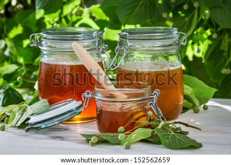 Honey in a jar and linden trees - stock photo