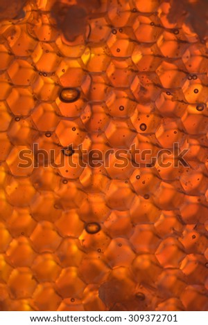 Honey oozing from sticky honeycomb