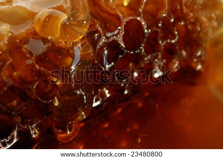 Honey with honeycomb - stock photo