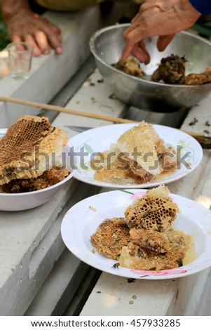 honeycomb and have honey bee in dish,The villagers in Thailand have a career in searching for honey to sell. - stock photo