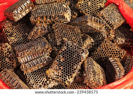 Honeycomb debris piled up together, closeup of photo