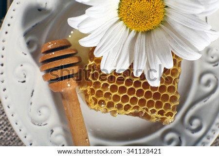 Honeycomb, dipper and chamomile on white plate closeup - stock photo