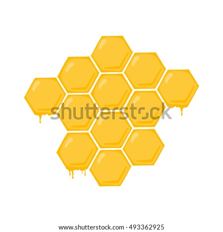 Honeycomb illustration