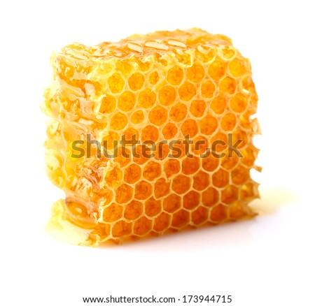 Honeycomb in closeup - stock photo