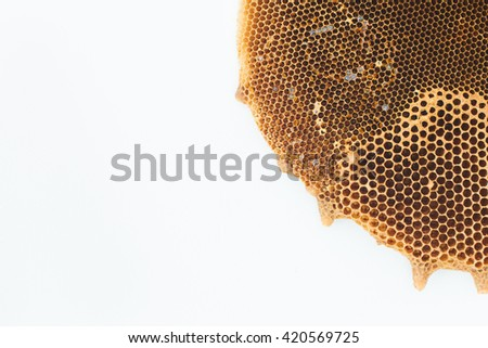 Honeycomb on the white background - stock photo