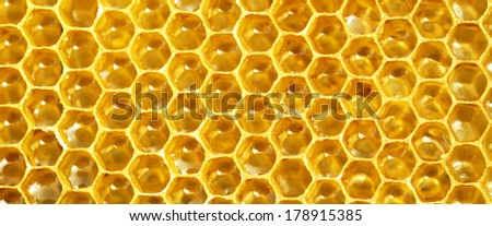 honeycomb pattern banner