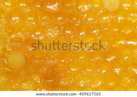 Honeycombs with honey, for backgrounds or textures - stock photo