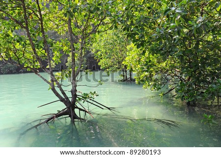 Hong Island Lagoon, Krabi, Thailand - stock photo