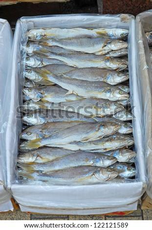 Hong Kong Sheung Wan market dried hakes - stock photo