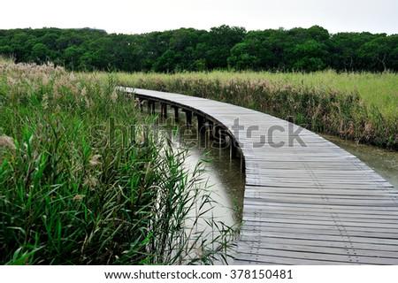 Hong Kong Wetland Park wooden walk way - stock photo