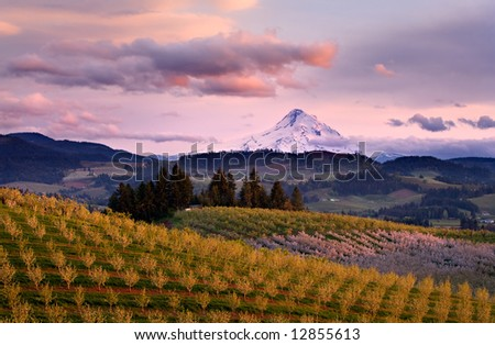 Hood River View Sunset - stock photo