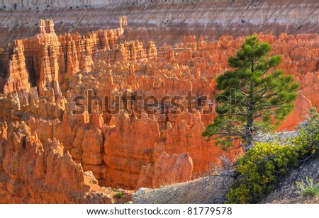 Hoodoos at Sunset - viewed from Amphitheater Point in Bryce Canyon - stock photo